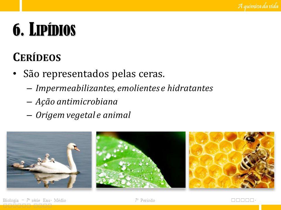 6. Lipídios Cerídeos São representados pelas ceras.