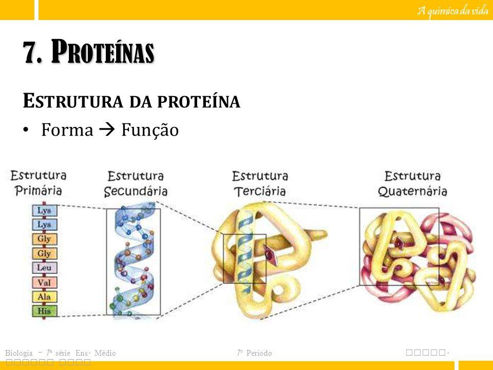 7. Proteínas Estrutura da proteína Forma  Função A química da vida
