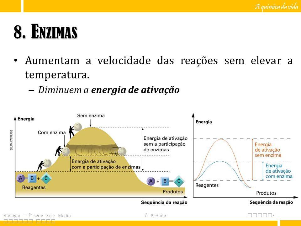 8. Enzimas Aumentam a velocidade das reações sem elevar a temperatura.
