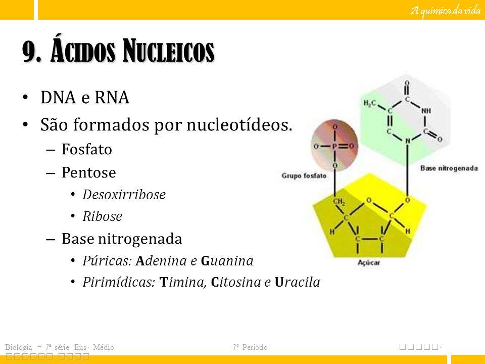 9. Ácidos Nucleicos DNA e RNA São formados por nucleotídeos. Fosfato