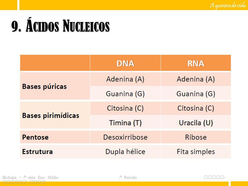 9. Ácidos Nucleicos A química da vida