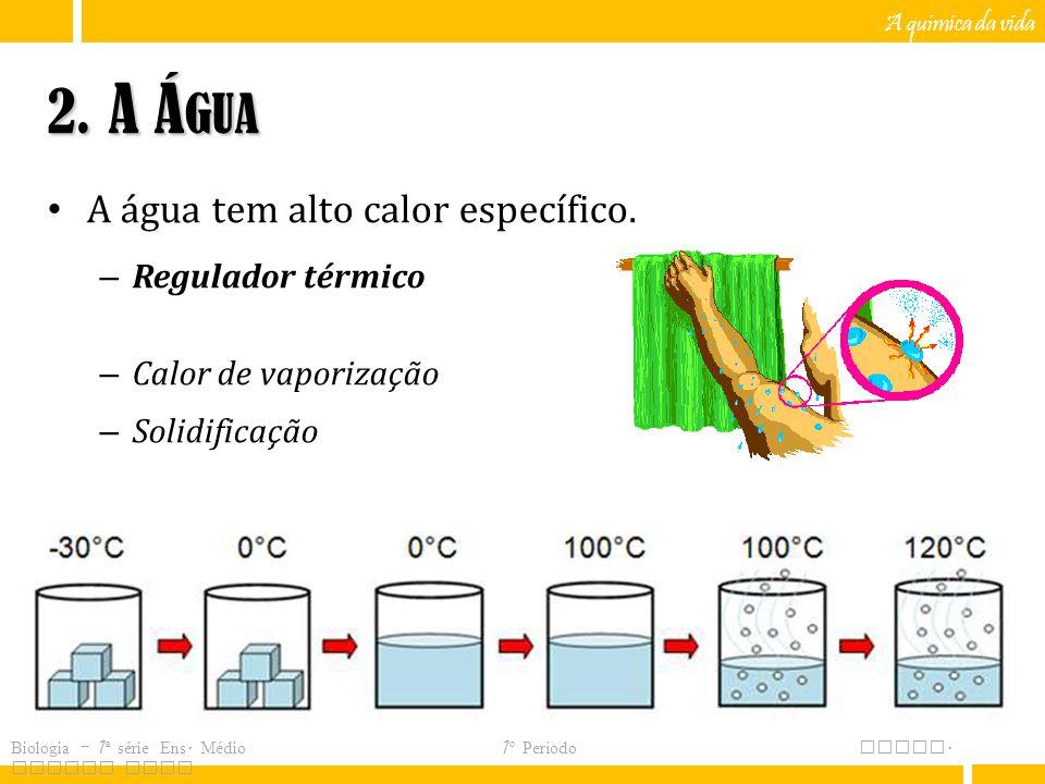 2. A Água A água tem alto calor específico. Regulador térmico