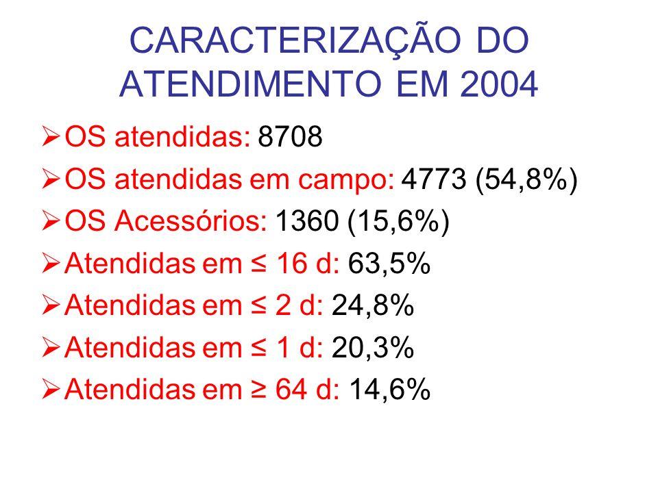 CARACTERIZAÇÃO DO ATENDIMENTO EM 2004