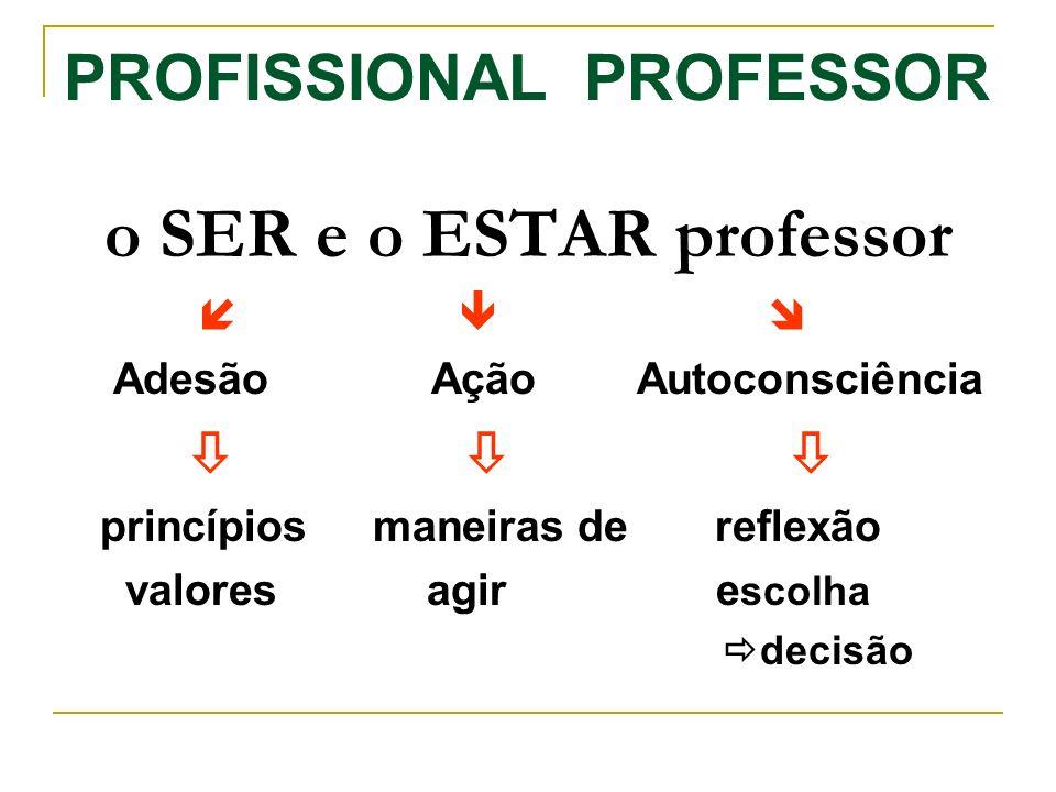 PROFISSIONAL PROFESSOR