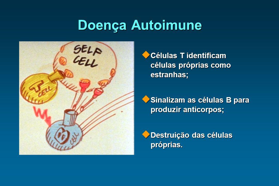 Doença Autoimune Células T identificam células próprias como estranhas; Sinalizam as células B para produzir anticorpos;