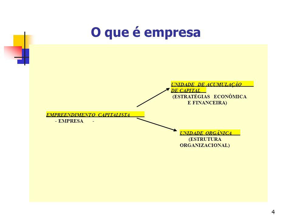 O que é empresa UNIDADE DE ACUMULAÇÃO DE CAPITAL