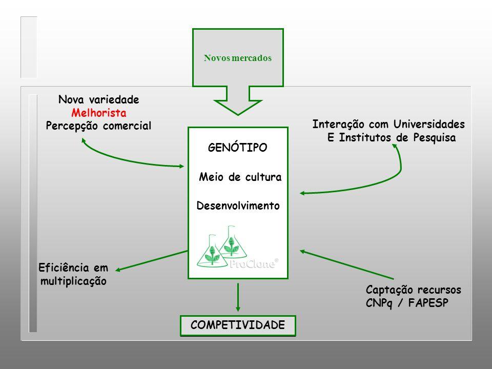 Interação com Universidades E Institutos de Pesquisa GENÓTIPO