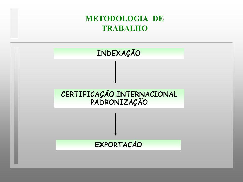 METODOLOGIA DE TRABALHO CERTIFICAÇÃO INTERNACIONAL