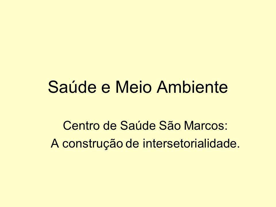 Centro de Saúde São Marcos: A construção de intersetorialidade.