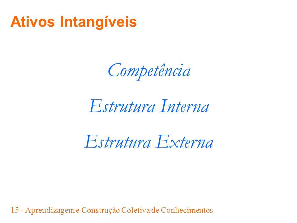 Competência Estrutura Interna Estrutura Externa