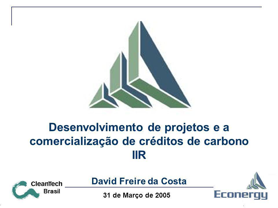 Desenvolvimento de projetos e a comercialização de créditos de carbono