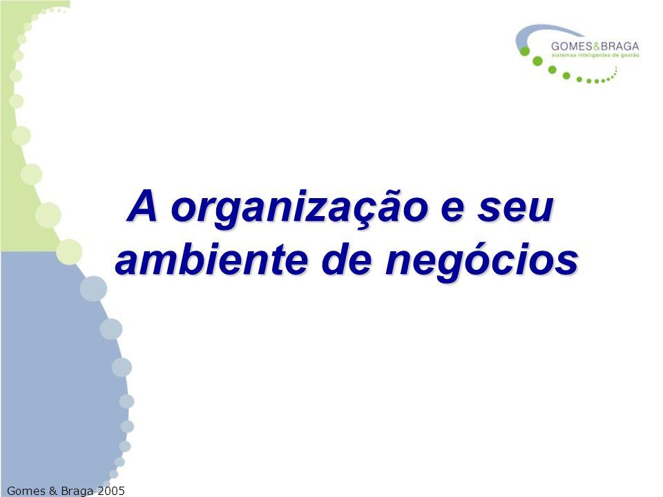 A organização e seu ambiente de negócios