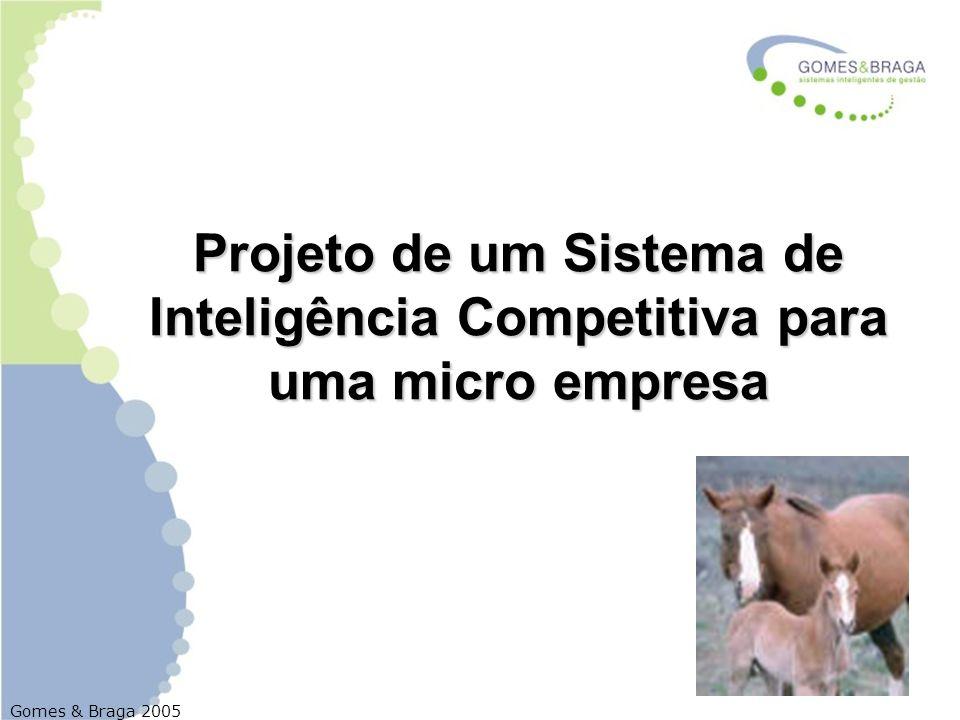 Projeto de um Sistema de Inteligência Competitiva para uma micro empresa