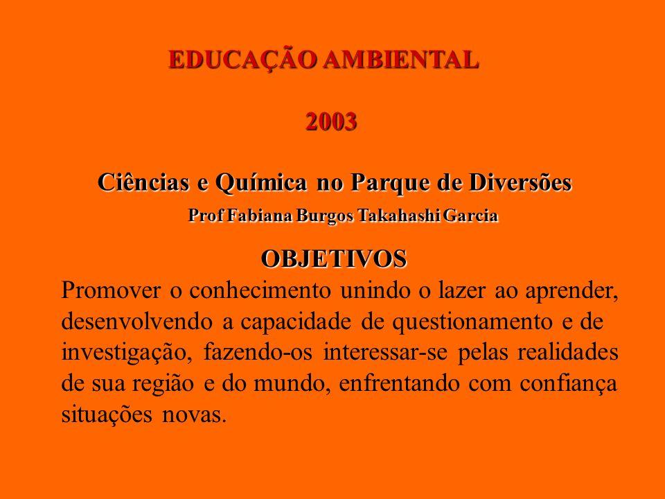 EDUCAÇÃO AMBIENTAL 2003. Ciências e Química no Parque de Diversões. Prof Fabiana Burgos Takahashi Garcia.