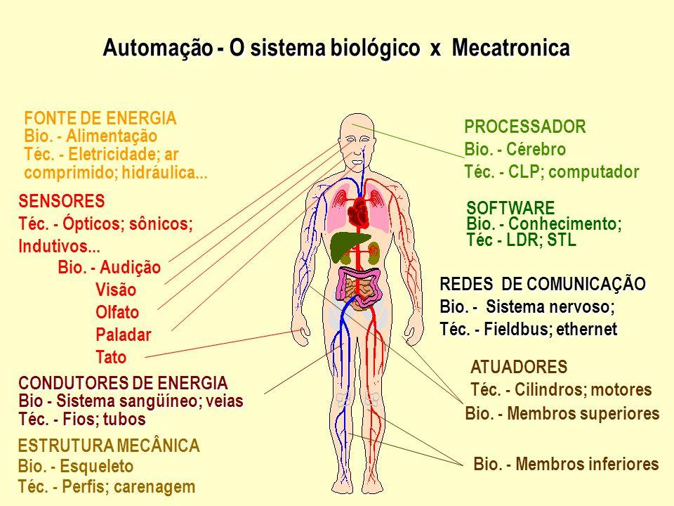Automação - O sistema biológico x Mecatronica