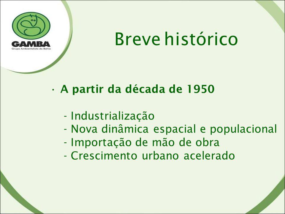 Breve histórico A partir da década de 1950 - Industrialização