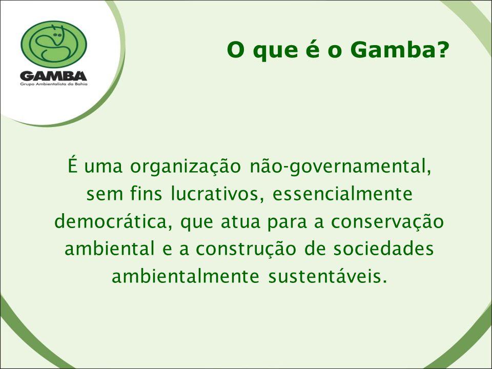 O que é o Gamba