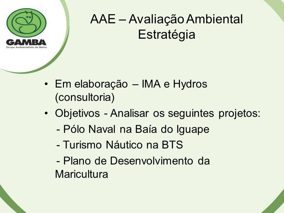 AAE – Avaliação Ambiental Estratégia
