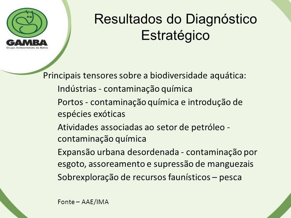 Resultados do Diagnóstico Estratégico