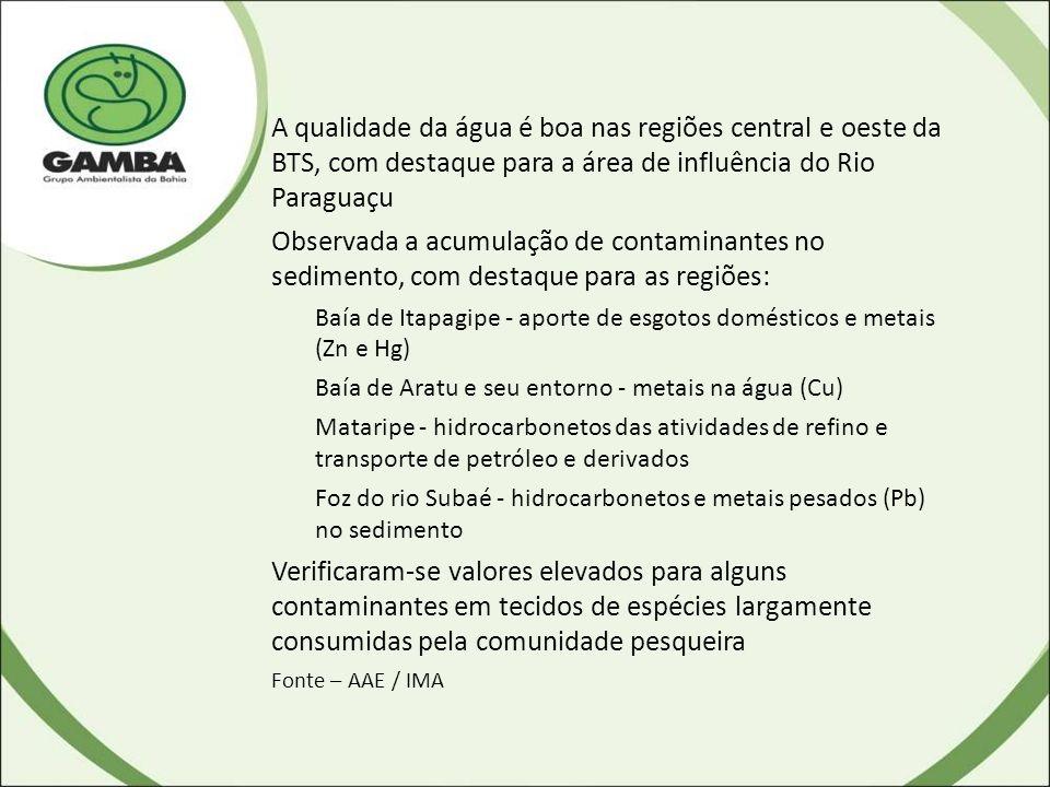 A qualidade da água é boa nas regiões central e oeste da BTS, com destaque para a área de influência do Rio Paraguaçu