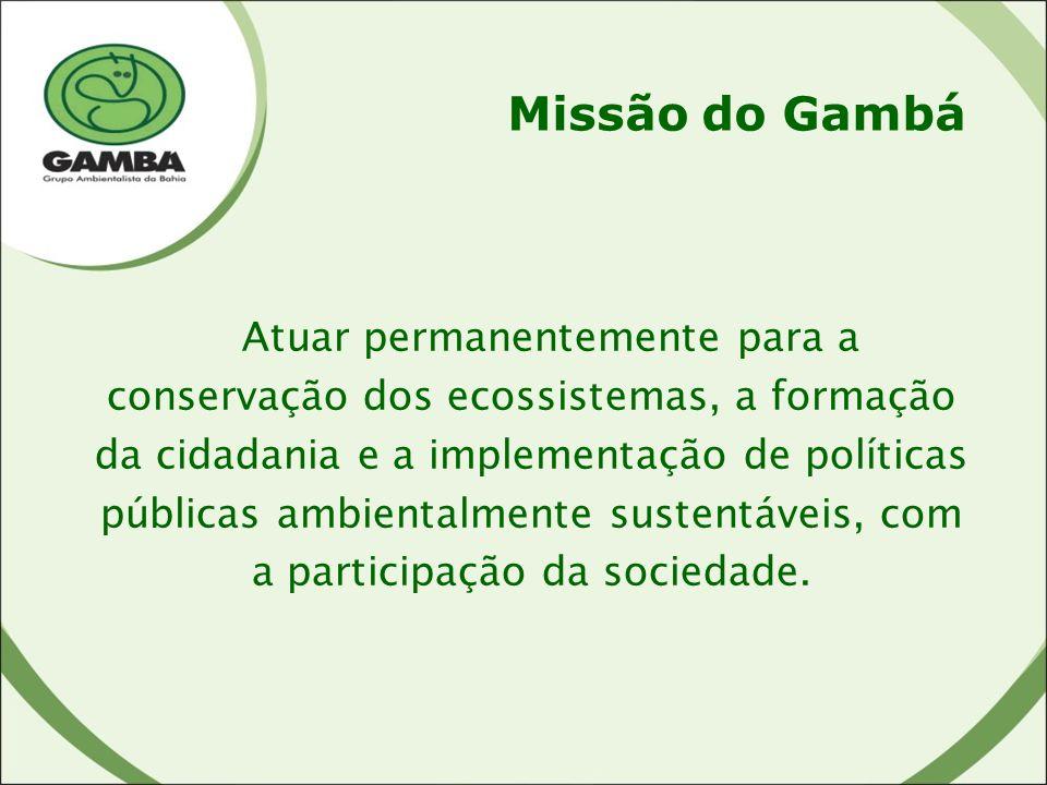 Missão do Gambá