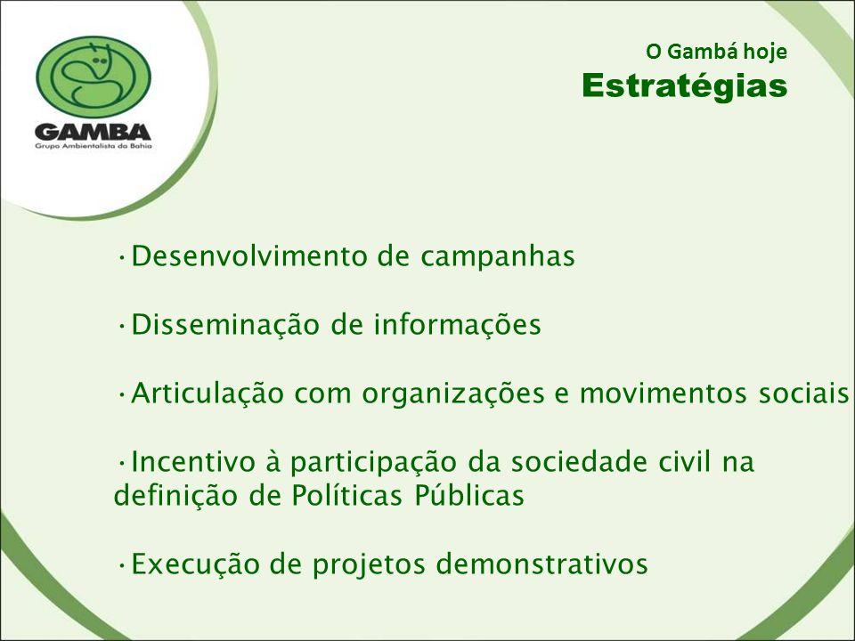 Estratégias Desenvolvimento de campanhas Disseminação de informações