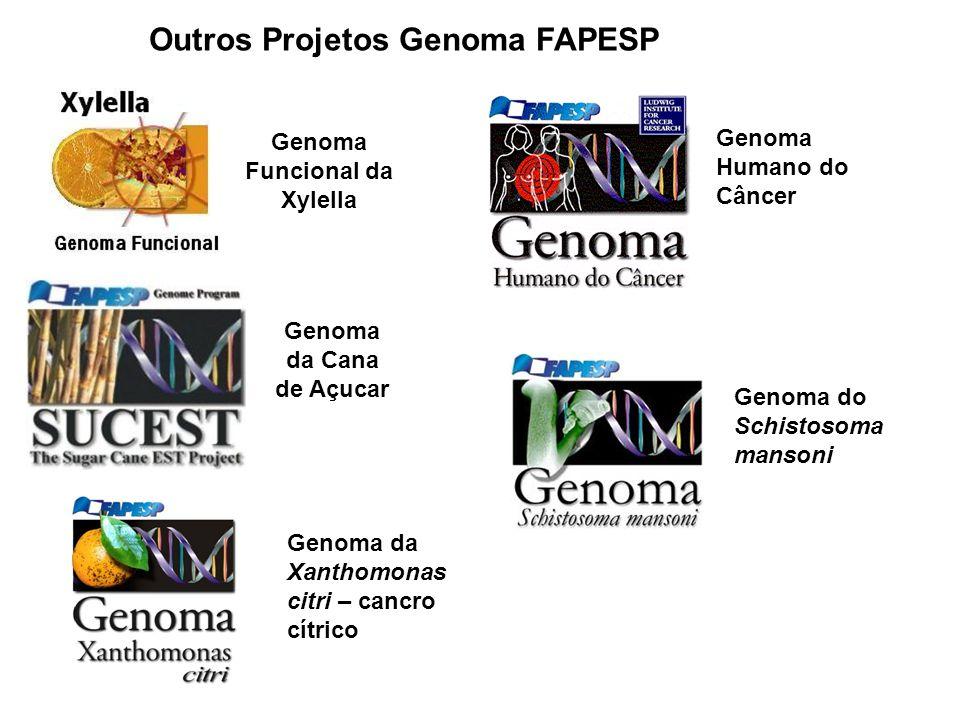 Genoma Funcional da Xylella Genoma da Cana de Açucar