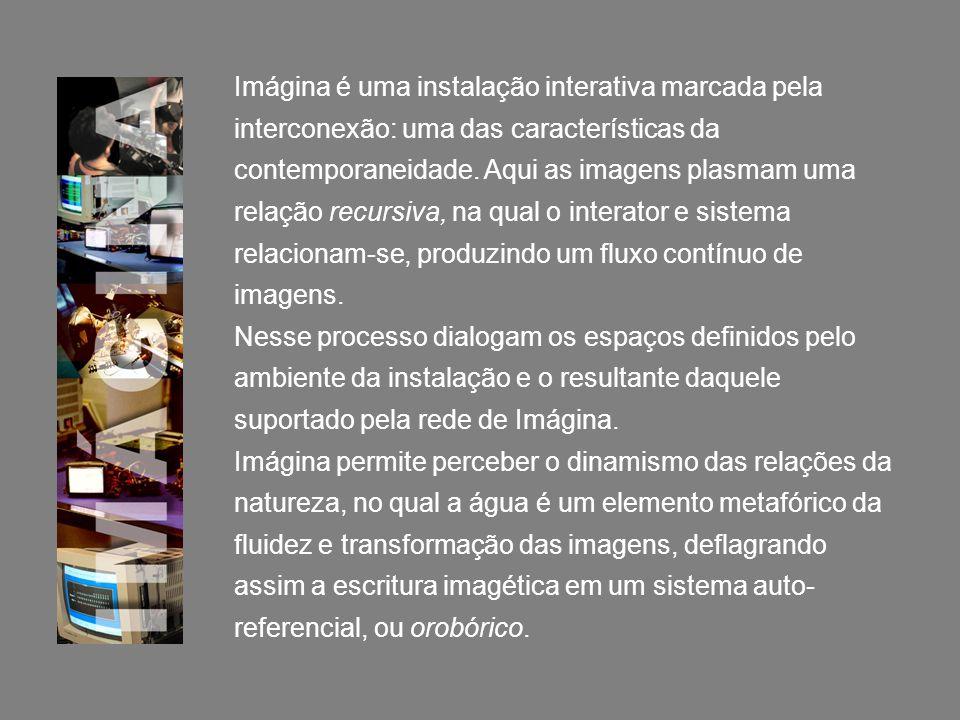 Imágina é uma instalação interativa marcada pela interconexão: uma das características da contemporaneidade. Aqui as imagens plasmam uma relação recursiva, na qual o interator e sistema relacionam-se, produzindo um fluxo contínuo de imagens.