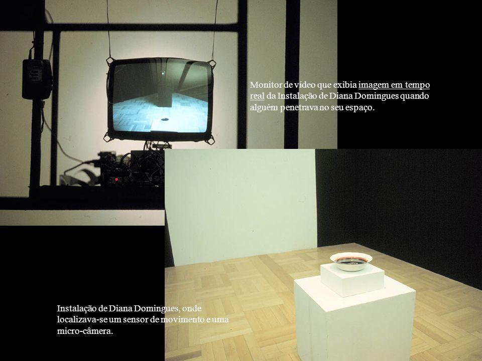 Monitor de vídeo que exibia imagem em tempo real da Instalação de Diana Domingues quando alguém penetrava no seu espaço.
