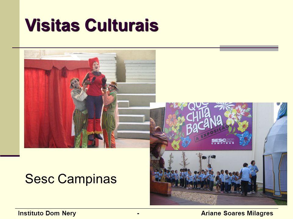 Visitas Culturais Sesc Campinas