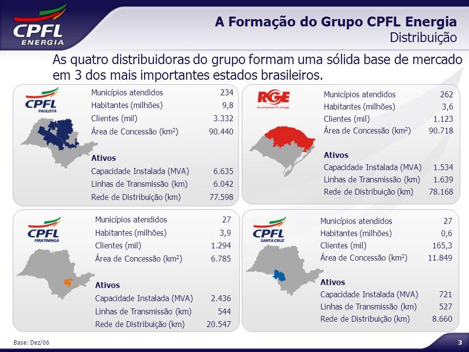 A Formação do Grupo CPFL Energia Distribuição