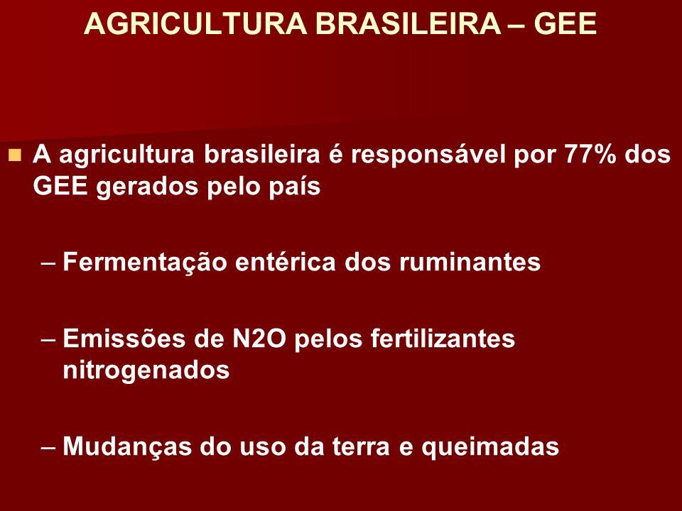 AGRICULTURA BRASILEIRA – GEE