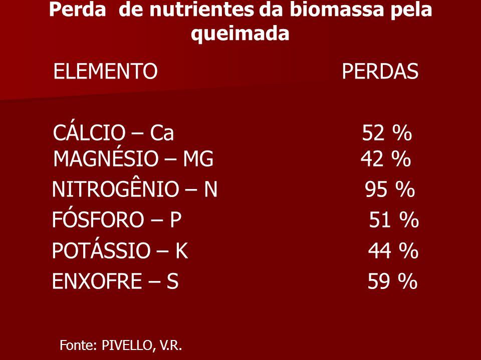 Perda de nutrientes da biomassa pela queimada