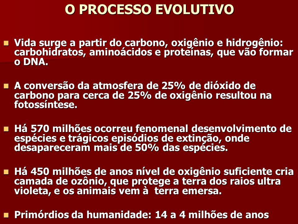 O PROCESSO EVOLUTIVO Vida surge a partir do carbono, oxigênio e hidrogênio: carbohidratos, aminoácidos e proteínas, que vão formar o DNA.