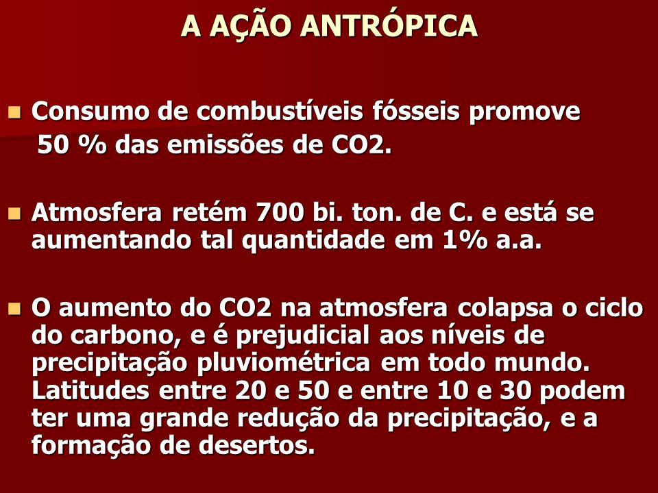 A AÇÃO ANTRÓPICA Consumo de combustíveis fósseis promove