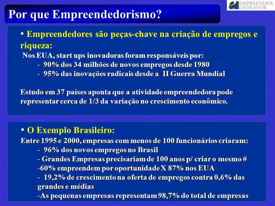 Por que Empreendedorismo