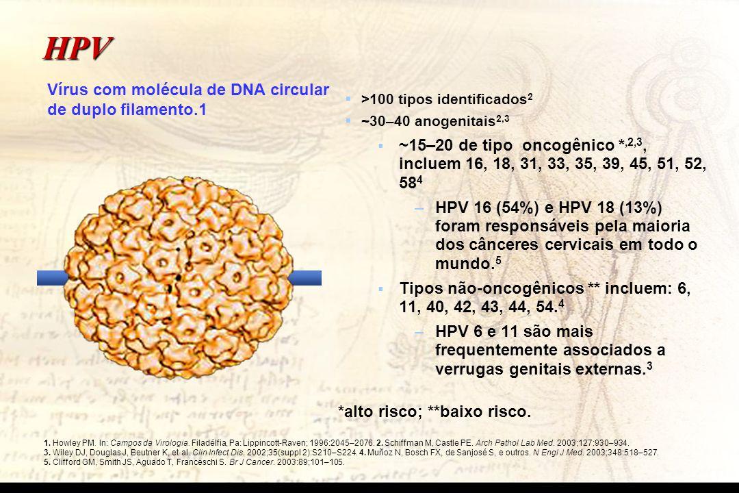 HPV Vírus com molécula de DNA circular de duplo filamento.1