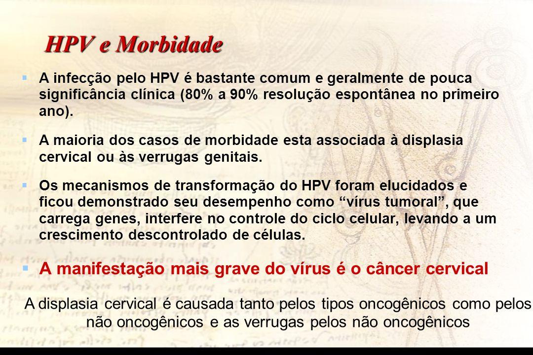 HPV e Morbidade A manifestação mais grave do vírus é o câncer cervical