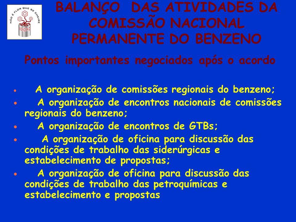 BALANÇO DAS ATIVIDADES DA COMISSÃO NACIONAL PERMANENTE DO BENZENO