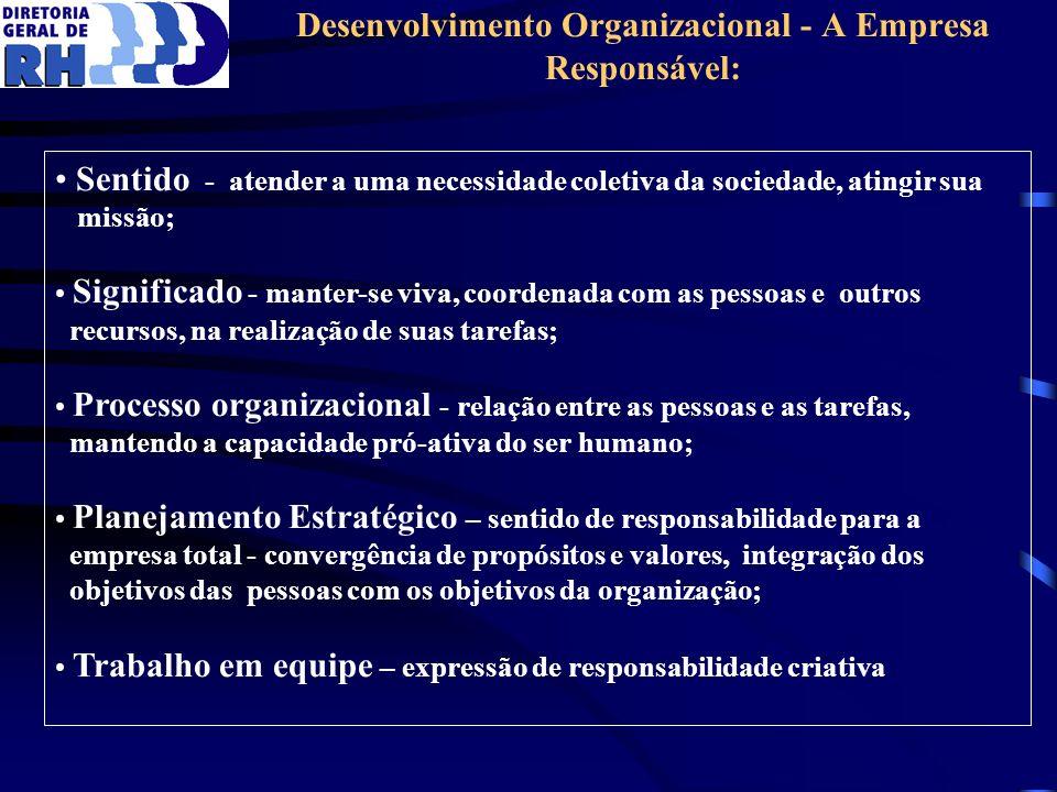 Desenvolvimento Organizacional - A Empresa Responsável: