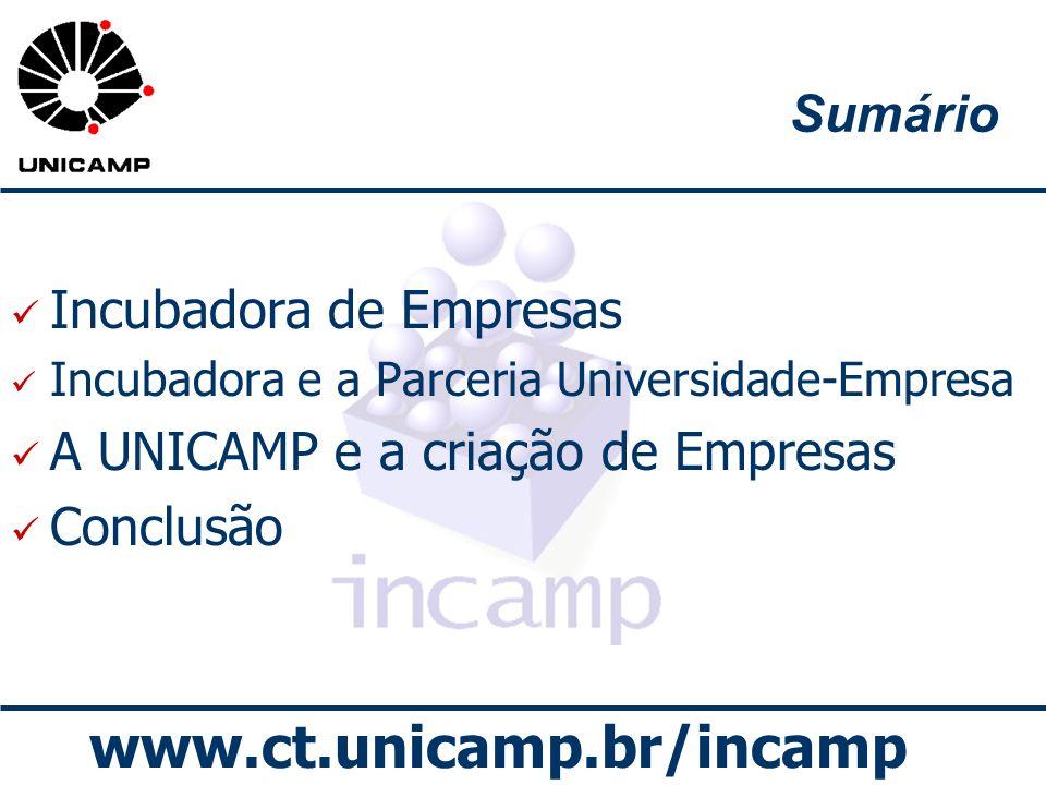 Incubadora de Empresas A UNICAMP e a criação de Empresas Conclusão