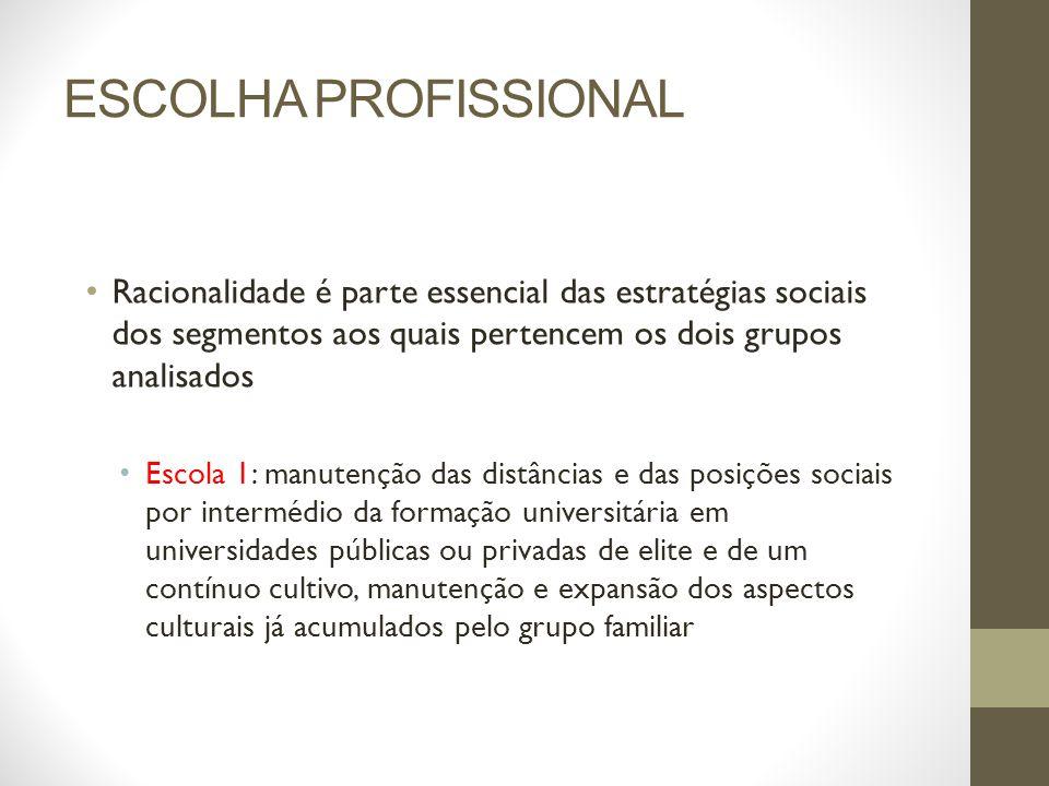 ESCOLHA PROFISSIONAL Racionalidade é parte essencial das estratégias sociais dos segmentos aos quais pertencem os dois grupos analisados.