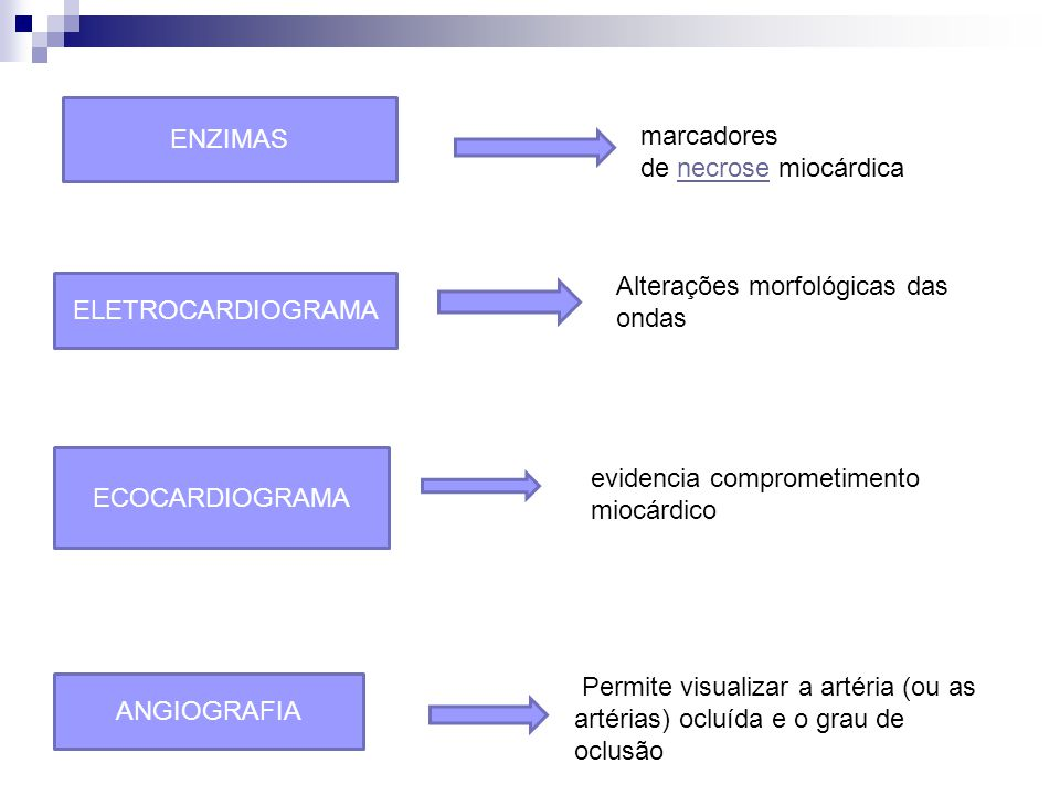 ENZIMAS marcadores de necrose miocárdica Alterações morfológicas das ondas. ELETROCARDIOGRAMA. ECOCARDIOGRAMA.