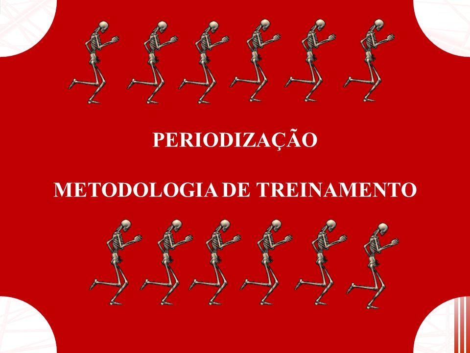 METODOLOGIA DE TREINAMENTO