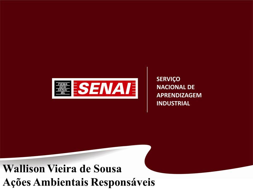 Wallison Vieira de Sousa
