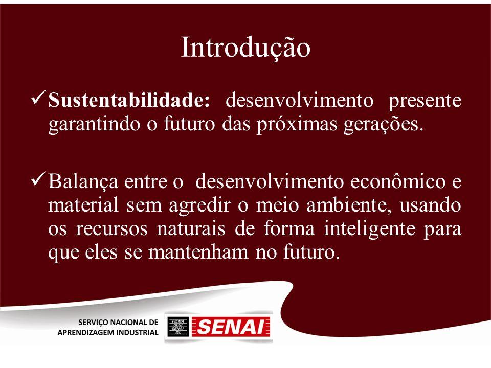 Introdução Sustentabilidade: desenvolvimento presente garantindo o futuro das próximas gerações.