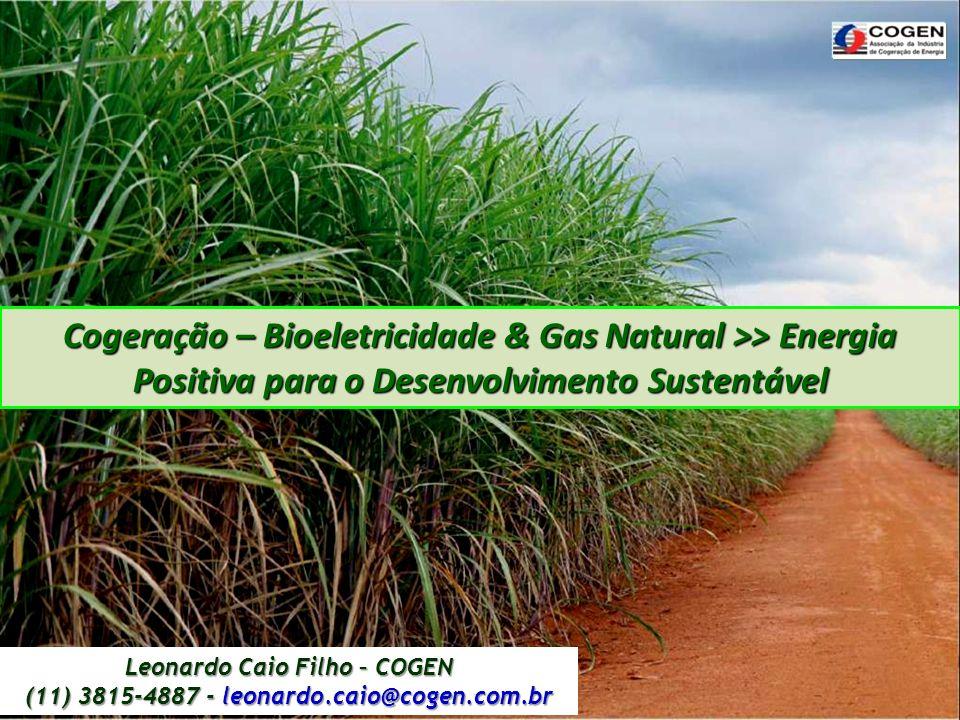 Cogeração – Bioeletricidade & Gas Natural >> Energia Positiva para o Desenvolvimento Sustentável Leonardo Caio Filho – COGEN.