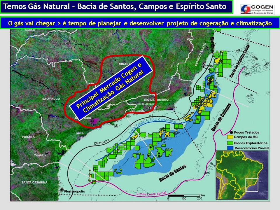 Principal Mercado Cogen e Climatização Gás Natural