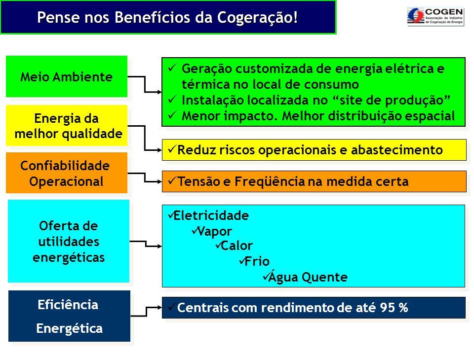 Pense nos Benefícios da Cogeração!