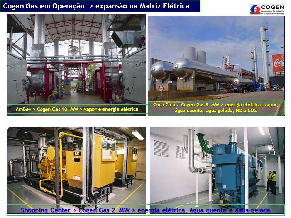 AmBev > Cogen Gas 10 MW > vapor e energia elétrica